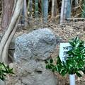 Photos: 宝塔寺の羅漢さん