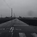 Photos: 雨影の道