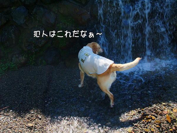 s-2008_0726myu0009