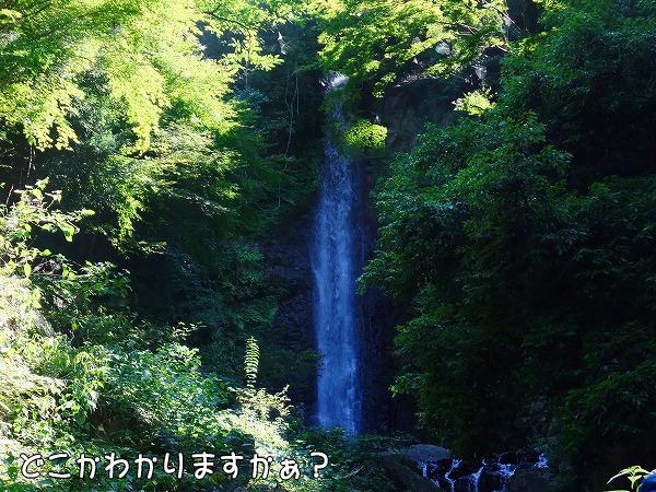 s-2008_0726myu0031
