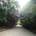 写真: 018.春日大社(8)