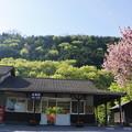 足尾駅の初夏