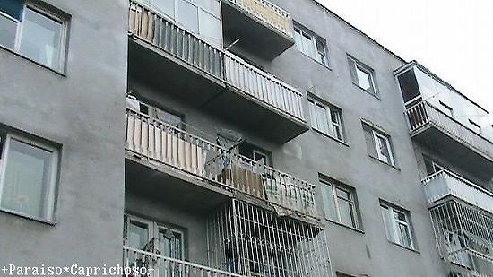 アパートメントの外観 ウランバートル
