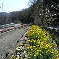 Photos: 線路1