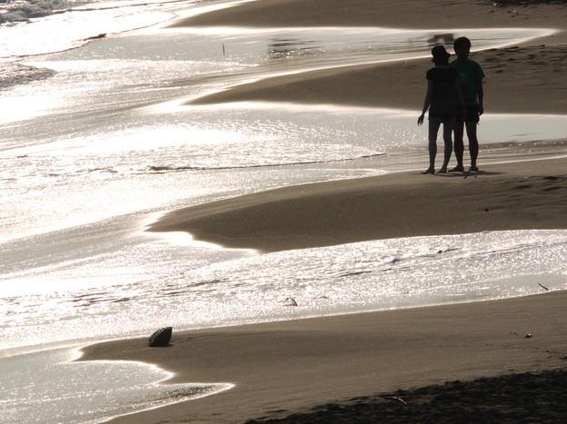 写真: 海岸物語6