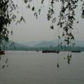 Photos: 杭州西湖・しだれ柳と遊覧船