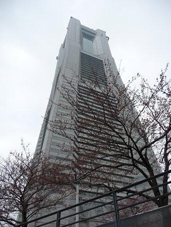 090401-MM21の桜