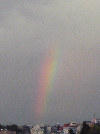 090508-虹 (4)