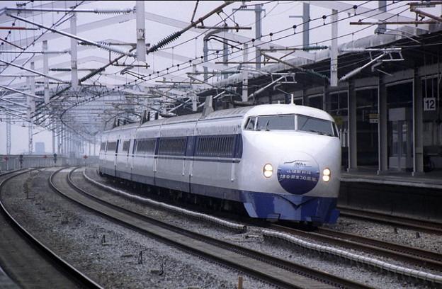 DSCF20 2005_3-10 No.25