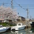 Photos: 射水市ぷらり旅_DSC_3252
