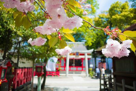 八坂神社(美御前社)