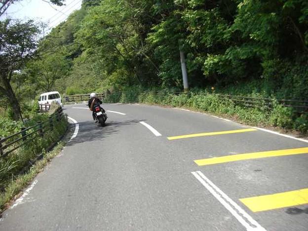 写真: 山道を行く