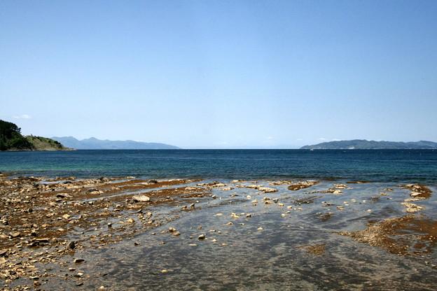 陸奥湾の海