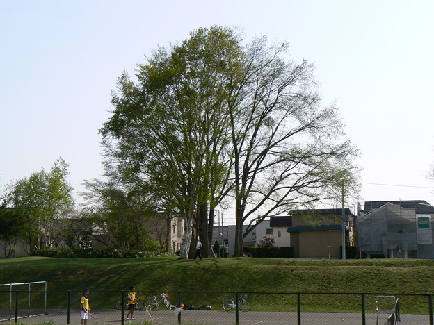 旧上野幌駅跡地P1010873