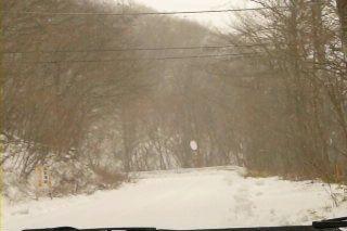 積雪路.jpg