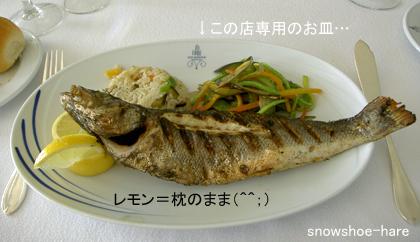 本日の魚(鱸)のグリル