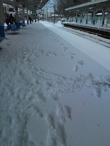 雪日2014年2月9日7時41分
