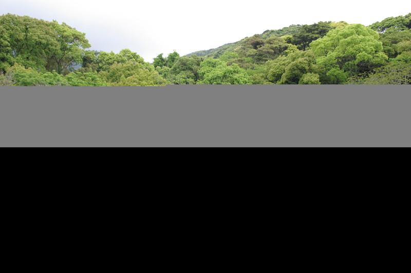 対馬藩お船江4