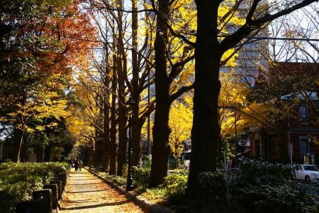 Warm Yellow~の街・・3