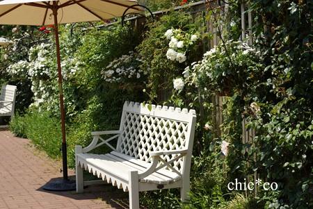 横浜 English Garden-158