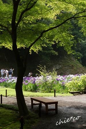 北鎌倉-077