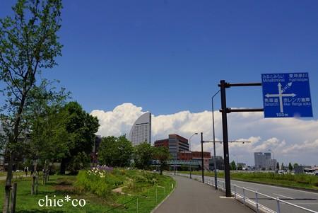 Yokohama-035