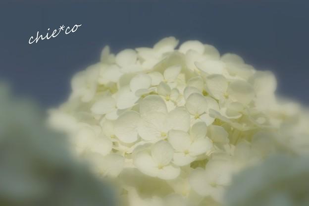 八景島-032