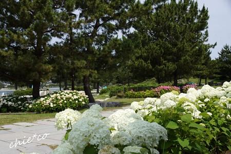 八景島-033