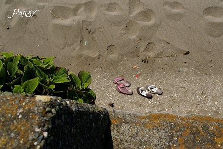 夏を感じた日・・  渚にて・・3