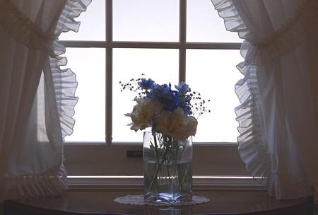 窓辺・・♪