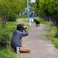 Photos: 歩くシーン