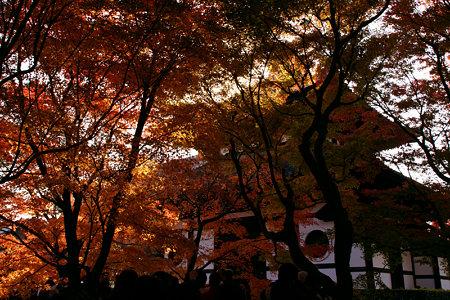 東福寺紅葉の経蔵1129x