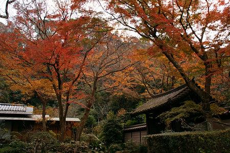 瑞泉寺の紅葉1220g