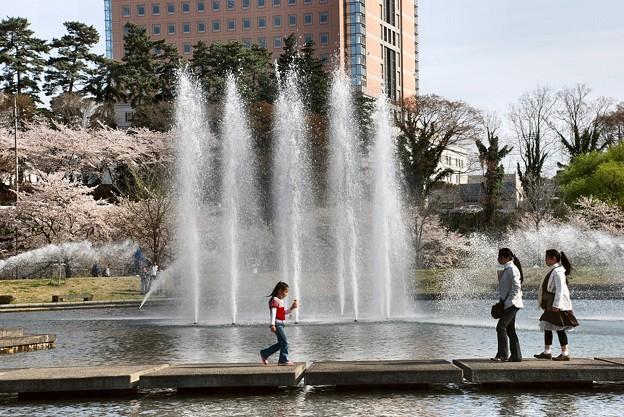 噴水と櫻と県庁舎-1-020