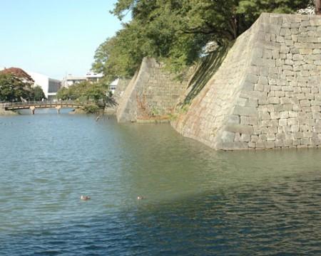 福井城本丸跡・南西側