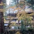 大本山永平寺の紅葉