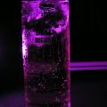 Photos: 紫グラス