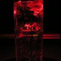 Photos: 赤グラス