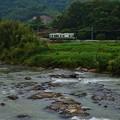 Photos: 清流 加古川に沿って