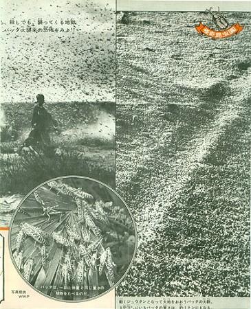 週刊少年サンデー 1969年39号007_8