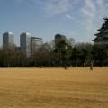 写真: 大阪城とビルとオッサン