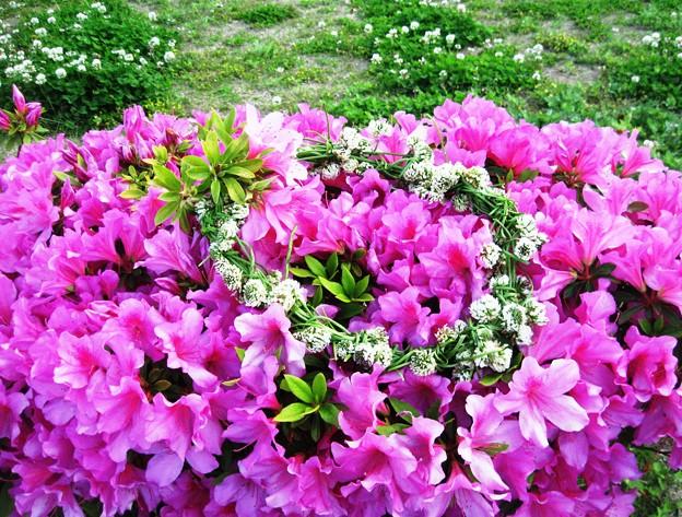 作りかけの花飾り 079