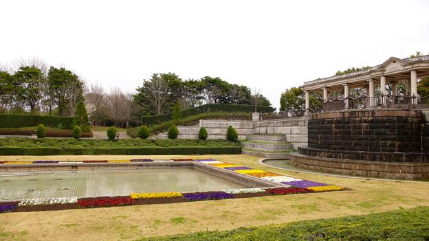 千葉県立青葉の森公園 - 春の西洋庭園 - 1