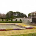 Photos: 千葉県立青葉の森公園 - 春の西洋庭園 - 1