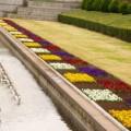 Photos: 千葉県立青葉の森公園 - 春の西洋庭園 - 2