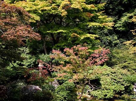 jissouin-201025-9