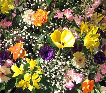 flower-210218-2