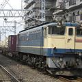 写真: ef65-1064-20090322