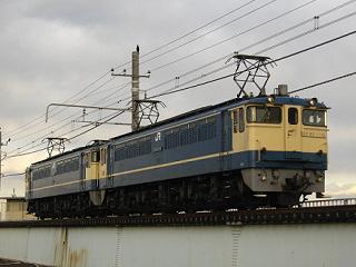 ef65-1116-20090217