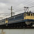 写真: ef65-1116-20090217